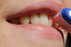 oral hygiene favoriteplus